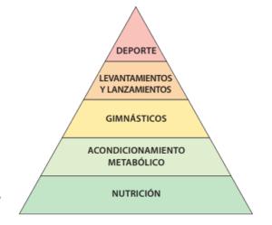 Nutrición, Acondicionamiento metabólico, Gimnásticos, Levantamientos y Lanzamientos y Deporte.
